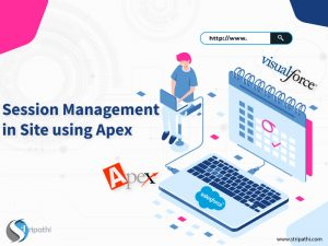 Session Management in Site using Apex